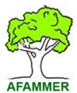 logotipo--7